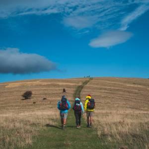 """Sabato 21 novembre torna """"Camminare. Il Festival del Social Walking"""""""