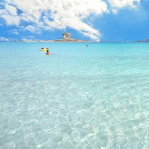 A Stintino, su una delle spiagge più belle della Sardegna, raccolti 20mila mozziconi di sigaretta in un weekend