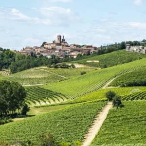 Nel Monferrato, tra vini, castelli, infernot e goloserie
