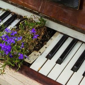 Un viaggio alla ricerca della musica perduta della Siberia