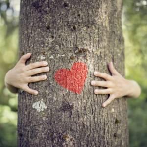 Il 21 marzo è la Giornata Internazionale delle Foreste