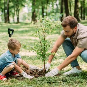 Piantare alberi per salvare il mondo: l'appello a tutti gli italiani