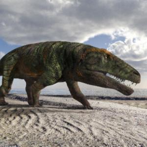 Orme fossili di un coccodrillo lungo 4 metri scoperte sulle Alpi Piemontesi