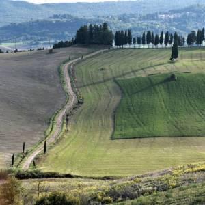 Toscana sconosciuta: itinerario nell'Alta Valdera, nel Pisano