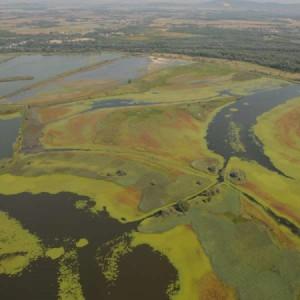 Nasce la prima Biosfera transnazionale dell'Unesco, La Mura-Drava-Danubio si estende in cinque Paesi europei