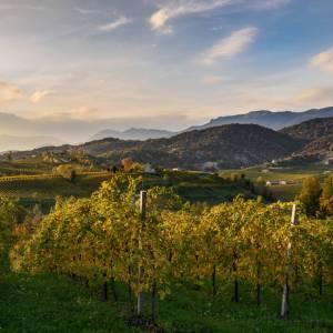 Sulle strade del Prosecco, in Veneto, tra le colline patrimonio dell'Umanità