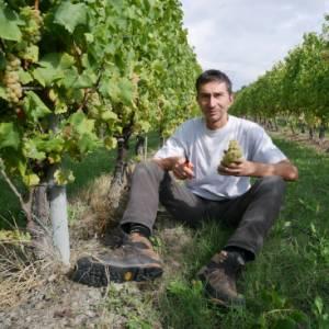 Nella bolognese Valle del Samoggia, laboratorio per eccellenze enogastronomiche e pratiche sostenibili