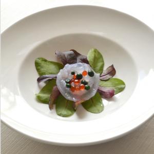 Le meduse saranno il cibo del futuro? Dal Cnr una ricerca e un libro di cucina firmato da chef stellati
