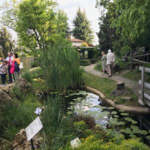 Arriva il solstizio d'estate, eventi e visite straordinarie negli orti botanici della Lombardia