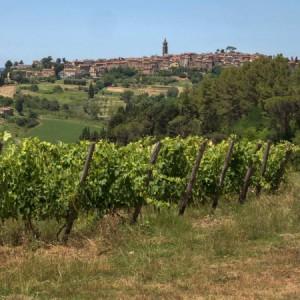"""""""Peccioli working village"""", al via le candidature per una settimana smart nel borgo toscano Bandiera Arancione"""