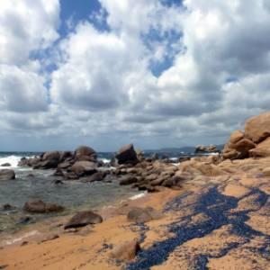 Le spiagge più belle della Corsica: le Calanques, il golfo di Ajaccio, Propriano