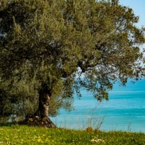 Le Voci del Giro: le meraviglie d'Abruzzo, con il fotografo Massimiliano Verdino