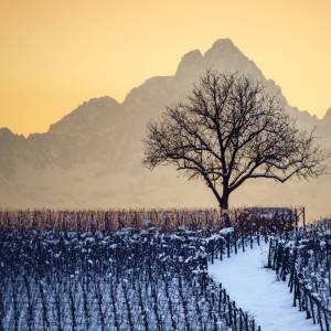 Idea weekend in Piemonte: Cuneo e il tour dei presepi tradizionali