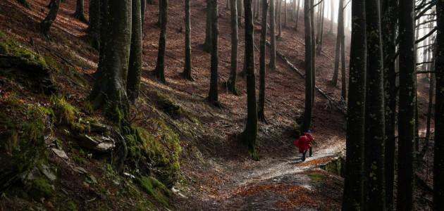 Va' Sentiero, capitolo 18. Tortelli, sorrisi, sentieri fangosi e squarci di luce tra Toscana ed Emilia Romagna