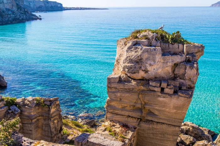 Dov 39 il mare pi bello della sicilia - Immagini del cardellino orientale ...
