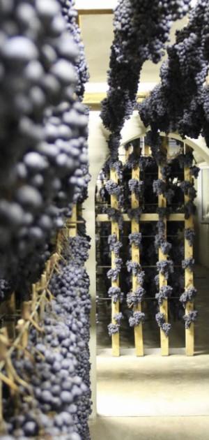 I festival del vino di ottobre e novembre