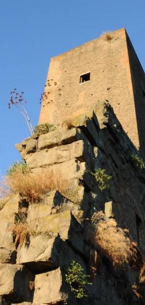 """Il parco di Tor Fiscale, esempio del """"prendersi cura"""" a Roma"""