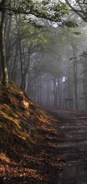 Tre ragazzi vogliono far rinascere il Sentiero Italia, il più lungo trekking del mondo