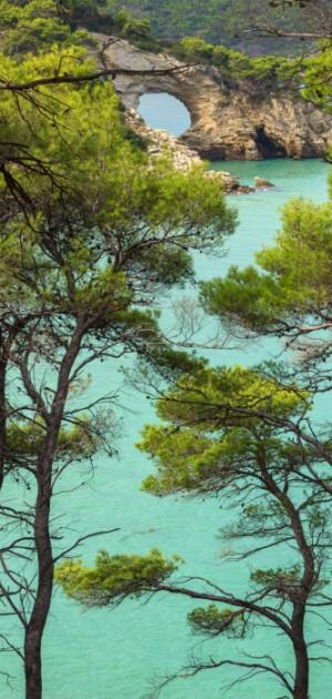 In camper nel Gargano: le spiagge più belle e la Foresta Umbra