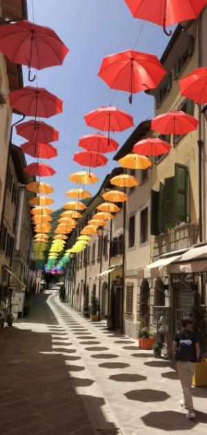 In camper in Romagna, tra i borghi e la natura dell'Appennino forlivese