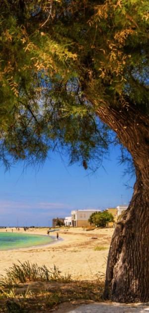 Il Salento in camper. Cosa fare tra Lecce e Taranto
